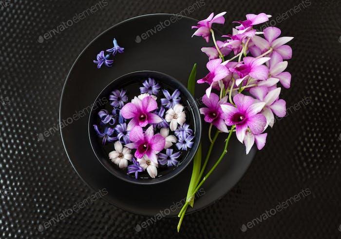 Frische Orchideen und Hyazinthen