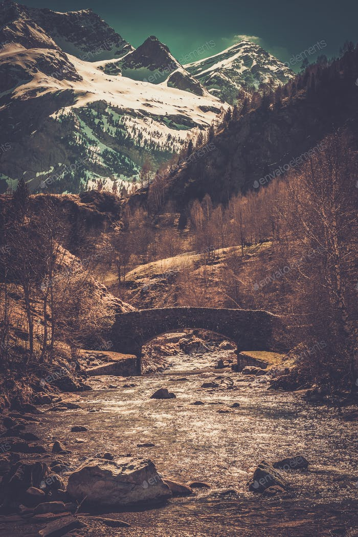 Puente sobre río Rápido en Bosque de montaña