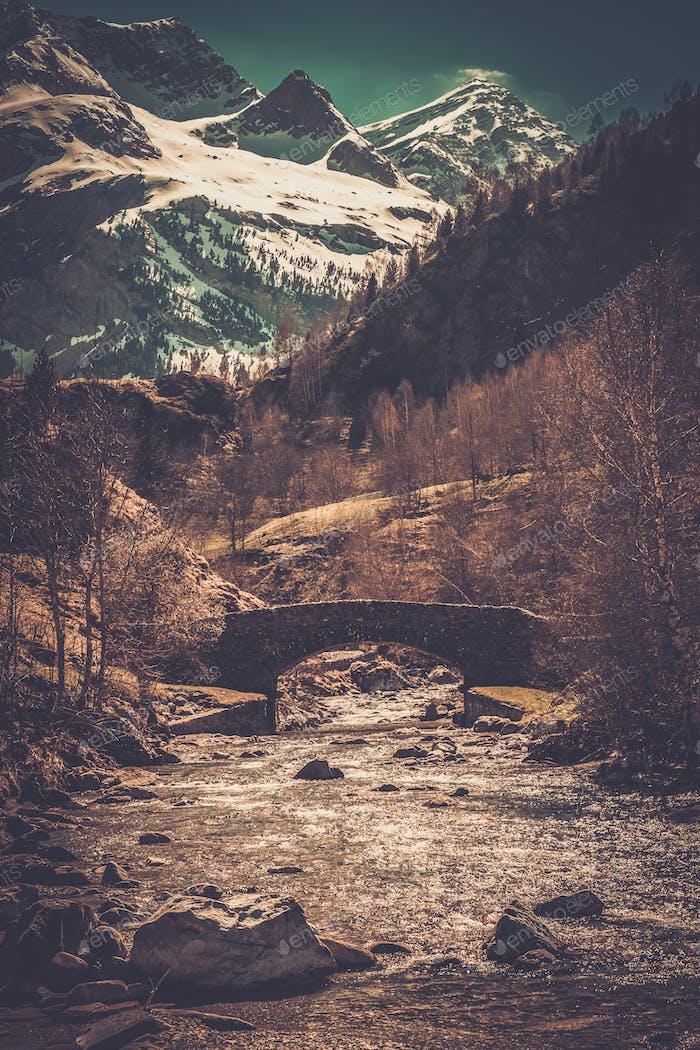 Brücke über den schnellen Fluss im Bergwald