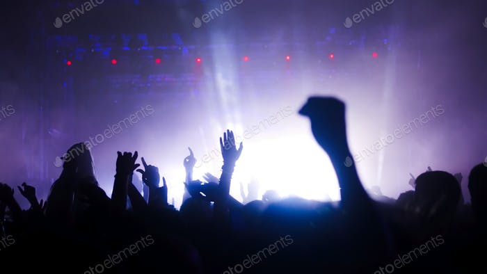 Picture of party people on music festival