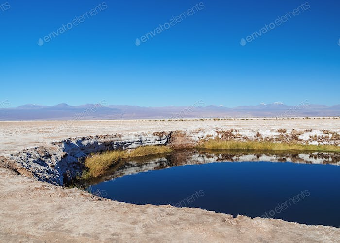 Salar de Atacama in Chile
