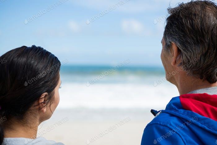 Vista trasera de pareja mirando a la vista