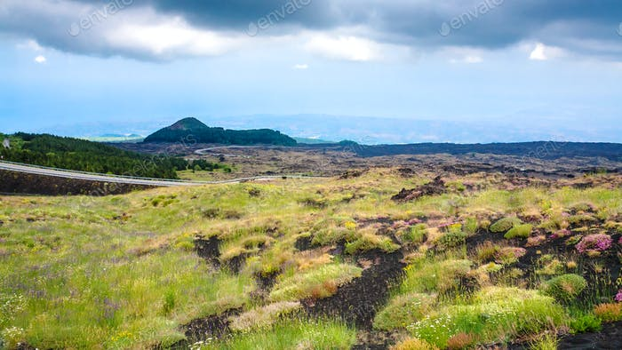 overgrown volcanic land of Mount Etna