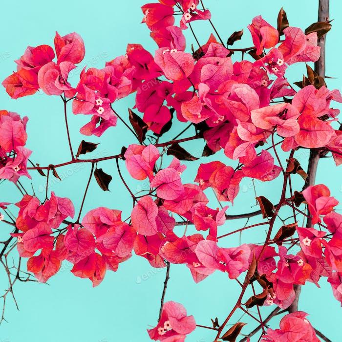 Frühlingsblüte Minimale Designkunst