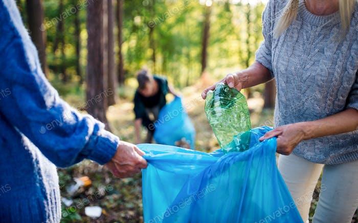 Senior women friends picking up litter outdoors in forest, a plogging concept