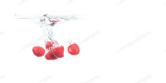 Blueberries falling into a water isolated on white background