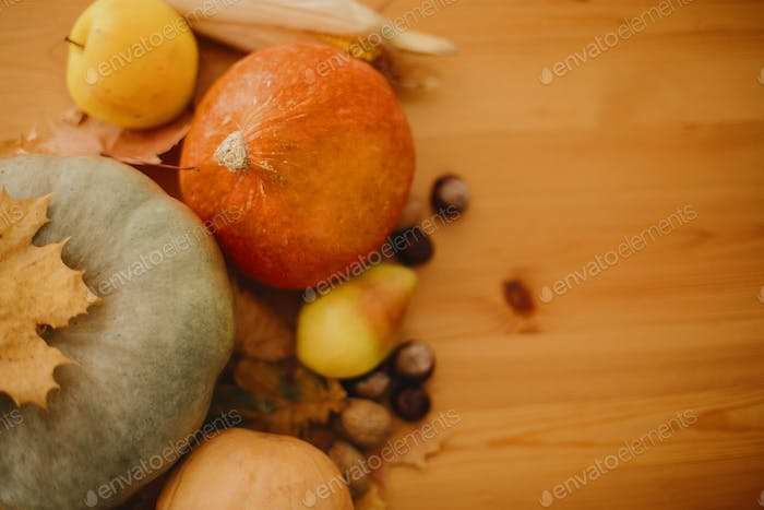 Pumpkins, autumn leaves, walnuts,chestnuts, corn, apple and pear on rustic wooden table