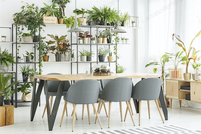 Natural grey dining room interior