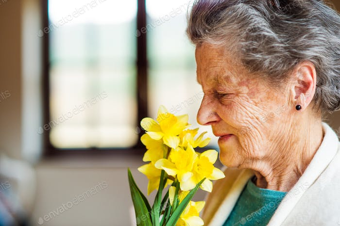 Senior woman by the window smelling bouquet of daffodils