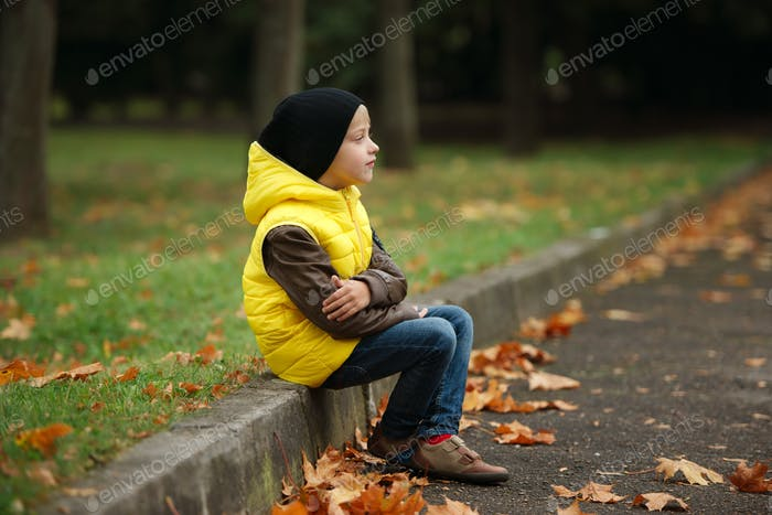 little funny boy in autumn leaves portrait