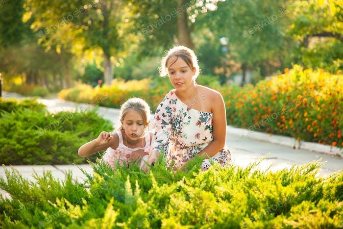 Zwei Schwestern blicken auf einen grünen Busch und genießen einen sonnigen Tag im Park