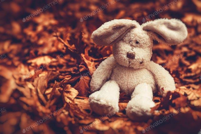 Kleiner trauriger Kaninchen