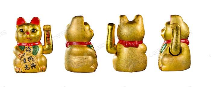 The golden pig