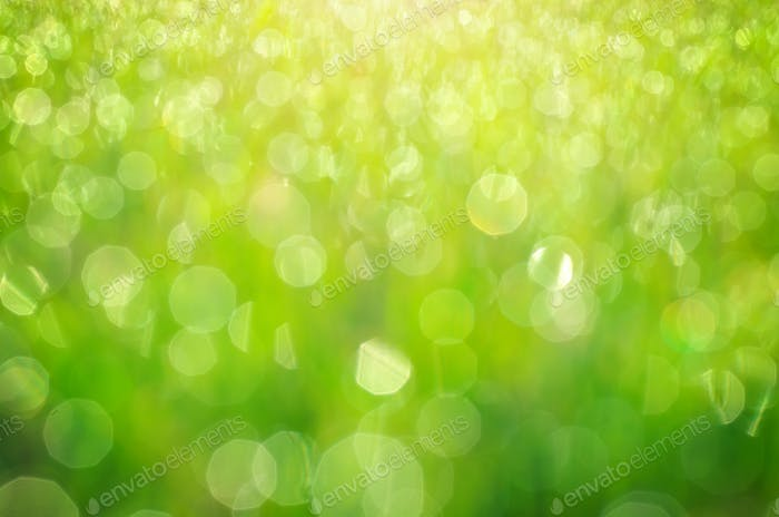Green bokeh background. Element of design.