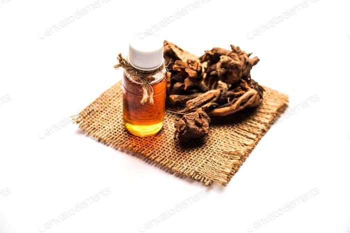 Extract of plumbago zeylanica root or Ayurvedic Chitrak