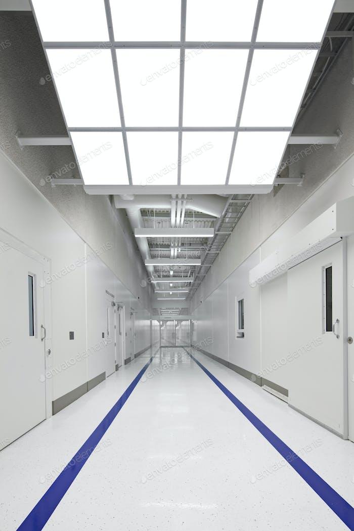 53737,Blue stripes on jail corridor