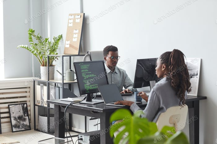 Two Software Developers in Office