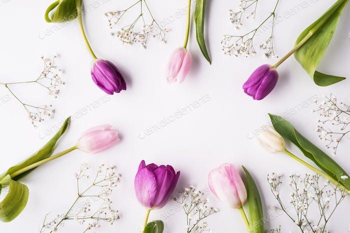 Blumen auf einem weißen Hintergrund. Kopierraum.