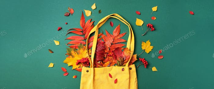 Autumn flat lay composition. Dry maple autumn leaves in yellow shopping bag on green background. Top