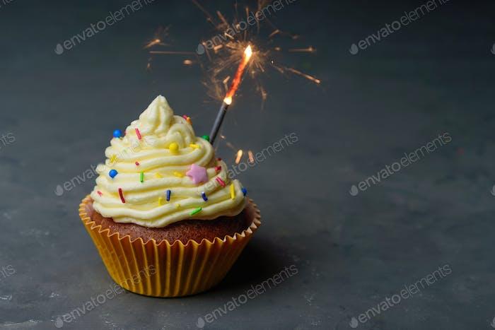 Birthday cupcake with sparkler