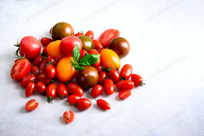 Cherry tomato on gray background with copyspace. Red, yellow and black tomatoes, basil leaves
