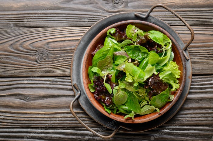 Top view at clay dish with green and violet lettuce, lamb's lett