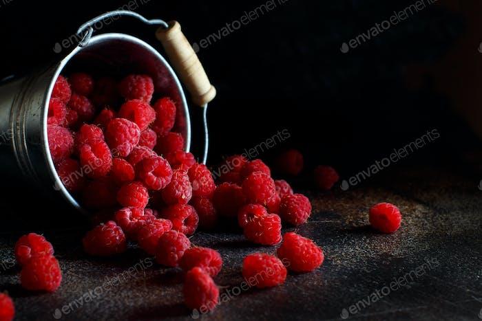 Fresh raspberries in a bucket