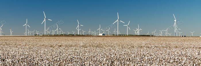 Wind Turbines Alternative Energy Texas Cotton Field Agriculture