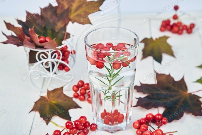 Hot tea near autumn leaves with viburnum berry, rosemary