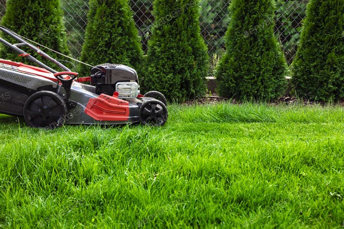 Mowing green lawn
