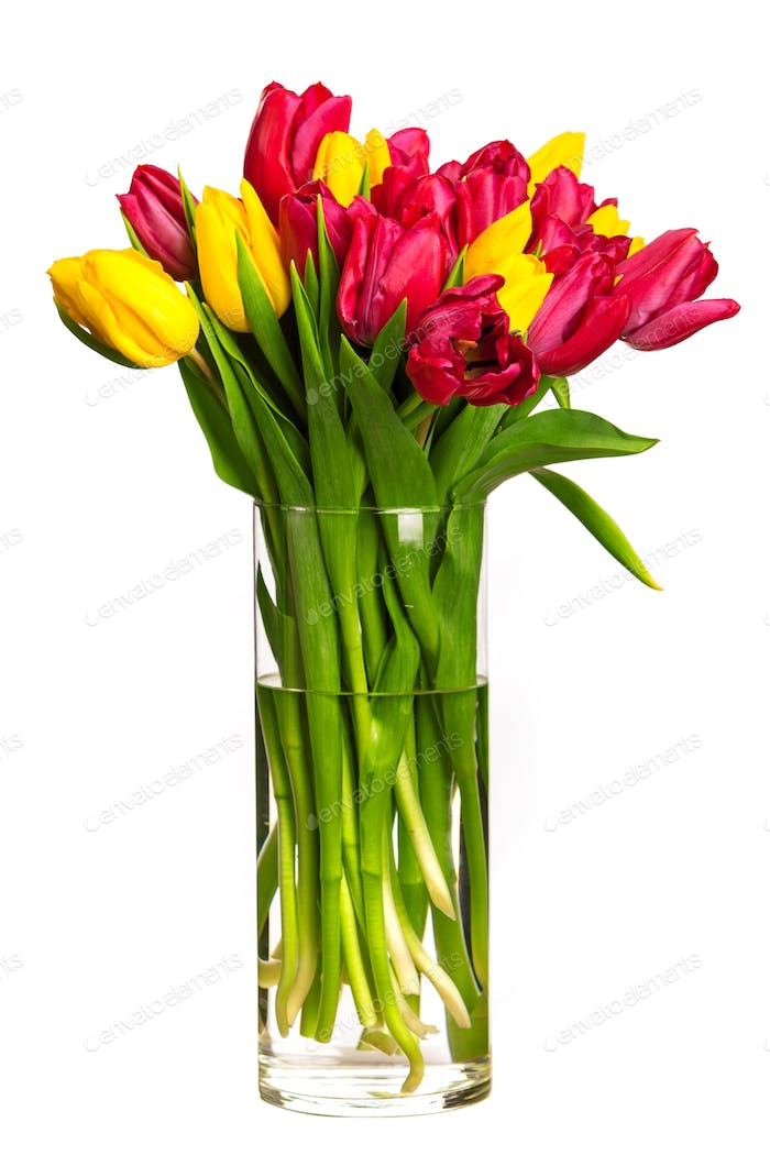 Bouquet of tulips over white