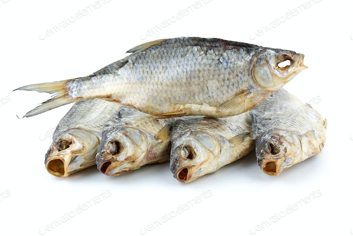 Five dried sea roach fishes