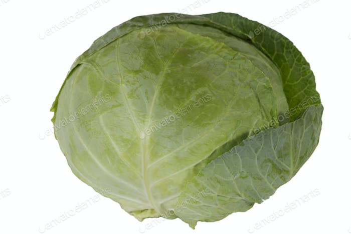 A large head of cabbage is shown in close-up. Isolated in a white background.