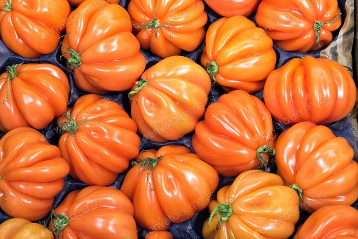 Beefsteak tomatoes for sale
