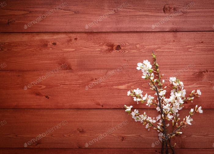 Flowers on wood texture background
