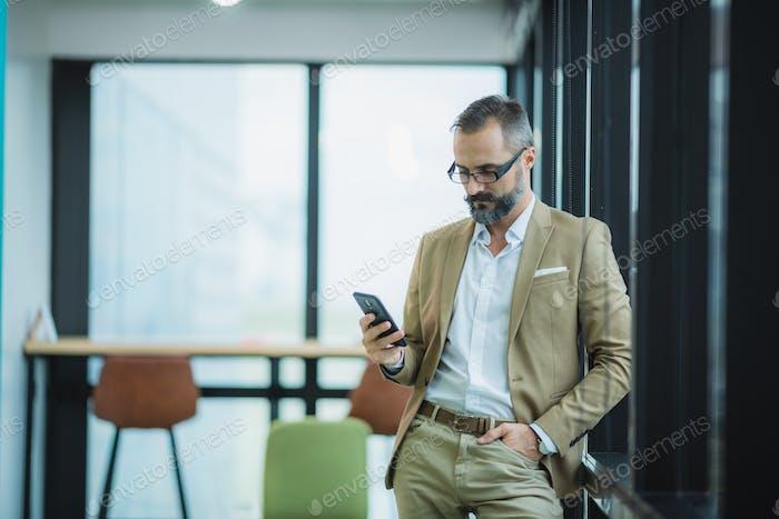 Porträt eines bärtigen Gentleman im trendigen Anzug, Schnurrbartgeschäftsmann