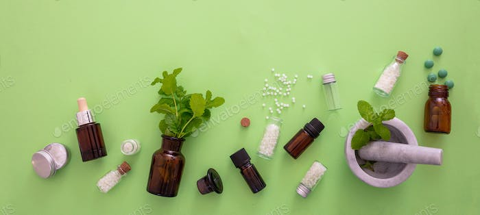 Spearmint herb and mortar and pestle on green background
