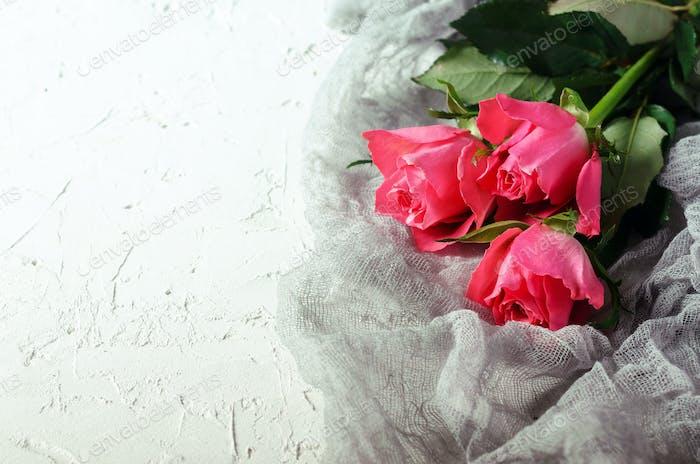 Rosa Rosen Blumenstrauß über weißem Hintergrund. Draufsicht mit Kopierraum