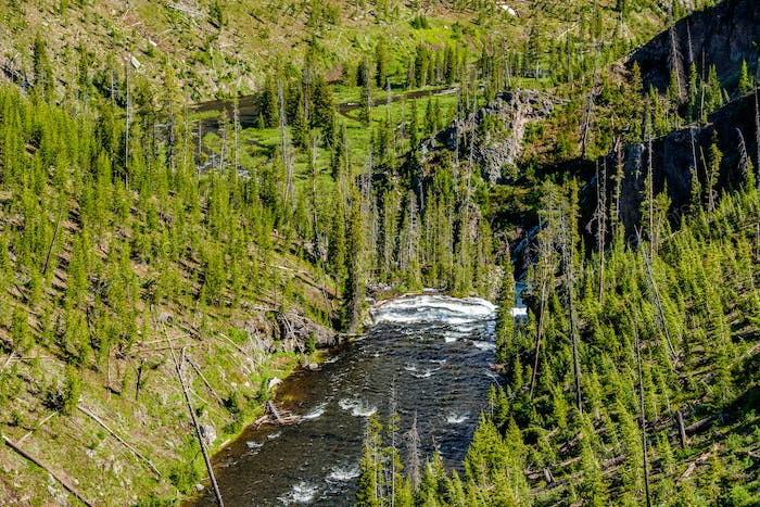Lava Creek in Yellowstone National Park