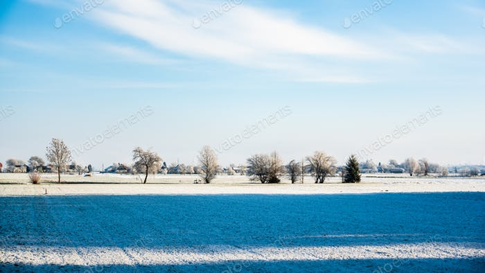Winter landscape forest view. Frost in fields