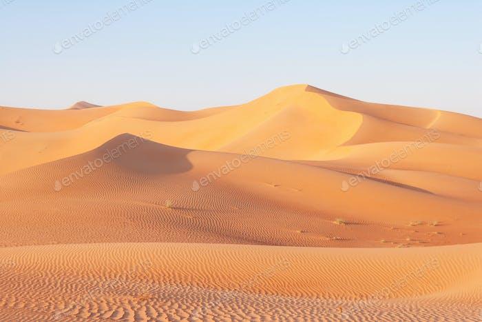 Dune Landscape in the Empty Quarter