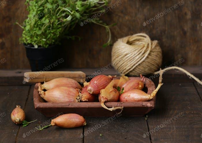 Organic Shallots