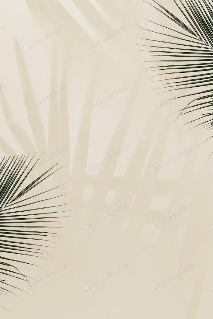 Fresh palm leaves on beige background