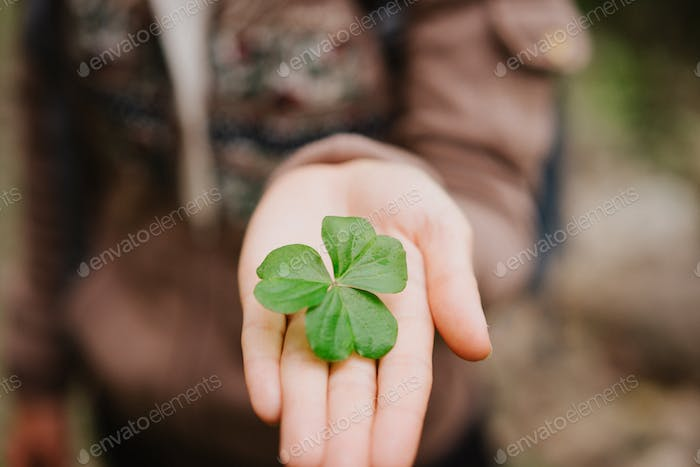 Hand over one clover leave on stretched female hand palm