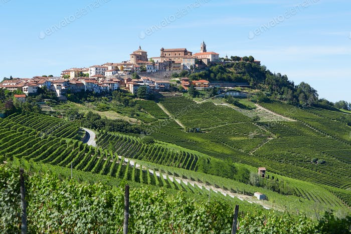La Morra town in Italy surrounded by vineyards in a sunny day