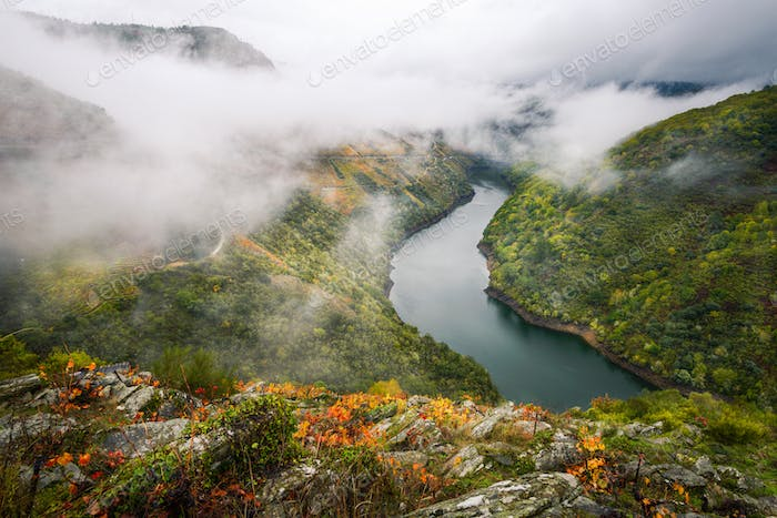 Landscape of the Ribeira Sacra with the Sil river undulating between vineyards and forests