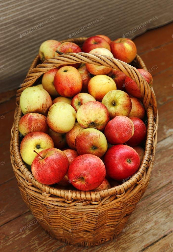 Helle leckere reife Äpfel in einem Korb