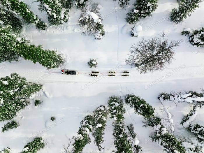 Luftaufnahme von Rodeln mit Husky-Hunden in Lappland Finnland.