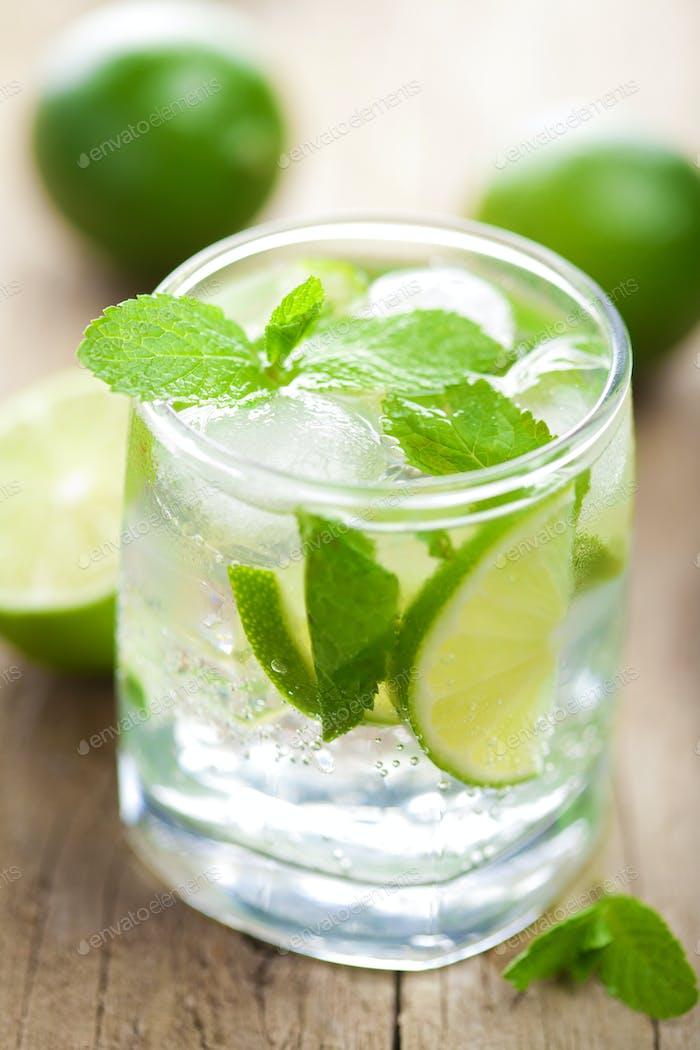 frischer Mojito Cocktail