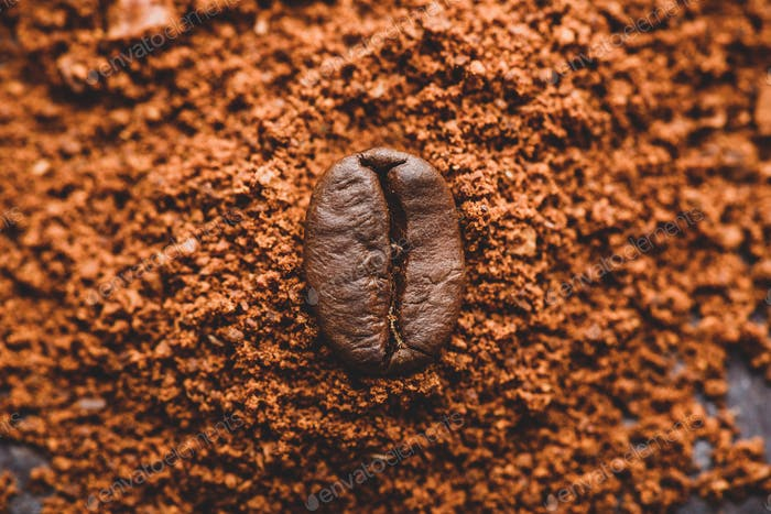 Coffee bean on heap of ground coffee